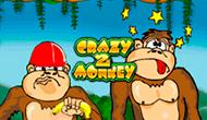 Crazy Monkey 2 играть