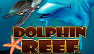 Dolphin Reef онлайн
