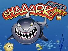 Играть Shaaark Superbet онлайн на зеркале сайта