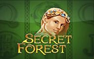 Secret Forest онлайн